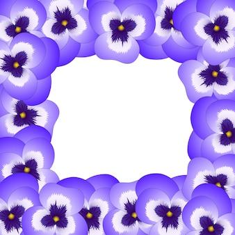 Confine di fiori viola viola del giardino di violetta.