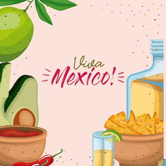Manifesto variopinto di viva mexico