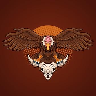 Cranio di avvoltoio