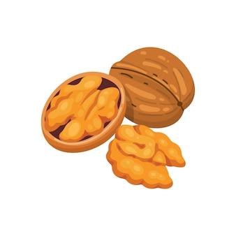 Dadi dell'icona della noce nello stile del fumetto raccolta dell'alimento del dado