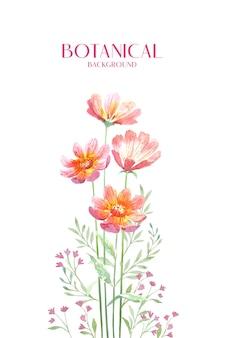 Fiore di zinnia rosso di colore dell'acqua con il ramo
