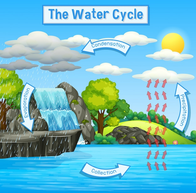Ciclo dell'acqua della terra