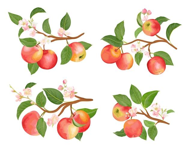 Rami di mela acquerello, foglie e fiori per poster, partecipazioni di nozze, striscioni estivi, modelli di copertina, scrapbooking, storie di social media, sfondi primaverili. elementi di illustrazione vettoriale