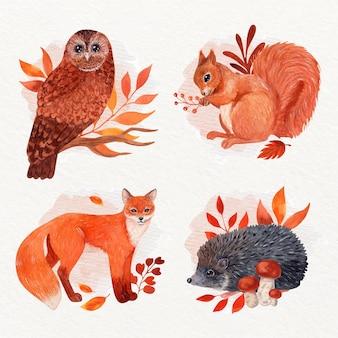 Collezione di animali autunnali ad acquerello
