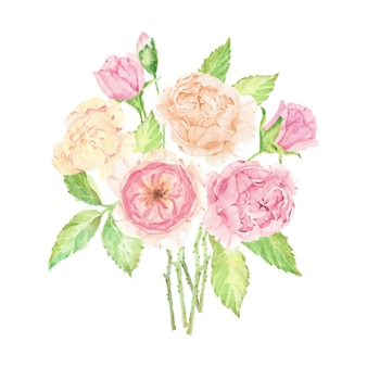 Acquerello bellissimo bouquet di rose inglesi isolato