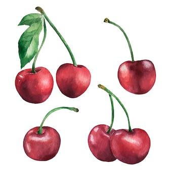 Bacca dell'acquerello imposta illustrazione disegnata a mano della ciliegia