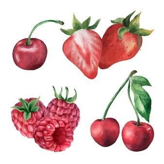 La bacca dell'acquerello ha impostato l'illustrazione disegnata a mano della fragola e dei lamponi della ciliegia