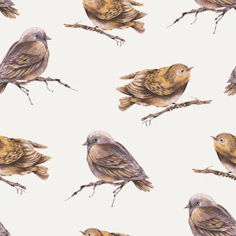 Uccello dell'acquerello su una carta da parati senza cuciture degli uccelli del modello del ramo