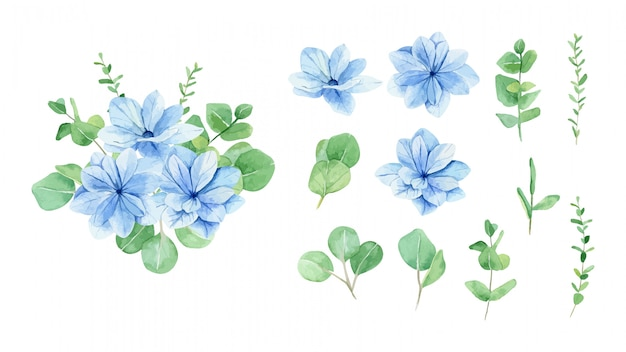 Bouquet di fiori blu dell'acquerello e insieme di elementi