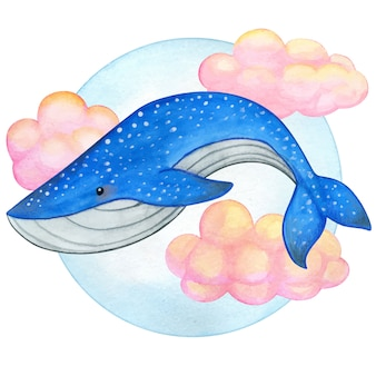 Balena blu dell'acquerello che nuota sulle nuvole rosa
