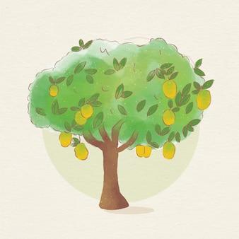 Albero di mango botanico dell'acquerello Vettore Premium