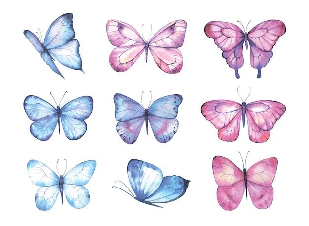 Collezione di farfalle dell'acquerello