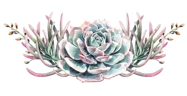 Bouquet di cactus e piante grasse di cactus dell'acquerello. pittura succulenta.