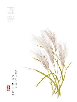 Pianta della natura dell'illustrazione di arte della pittura dell'inchiostro cinese dell'acquerello dalla canna del libro dei canti.