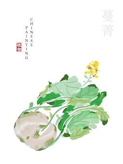 Acquerello cinese vernice inchiostro arte illustrazione natura pianta da rapa del libro dei canti.