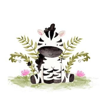 Zebra carina dell'acquerello
