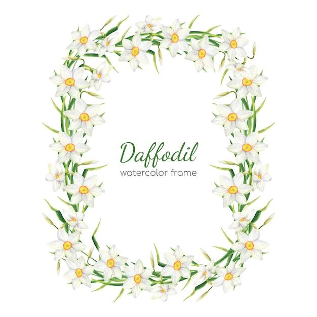 Cornice floreale di narcisi ad acquerello illustrazione di ghirlande di fiori bianchi