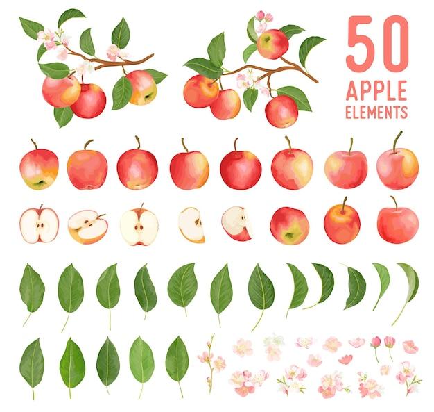 Elementi ad acquerello di frutti di mela, foglie e fiori per poster, partecipazioni di nozze, striscioni boho estivi, modelli di copertina, storie di social media, sfondi primaverili. illustrazione vettoriale di mele