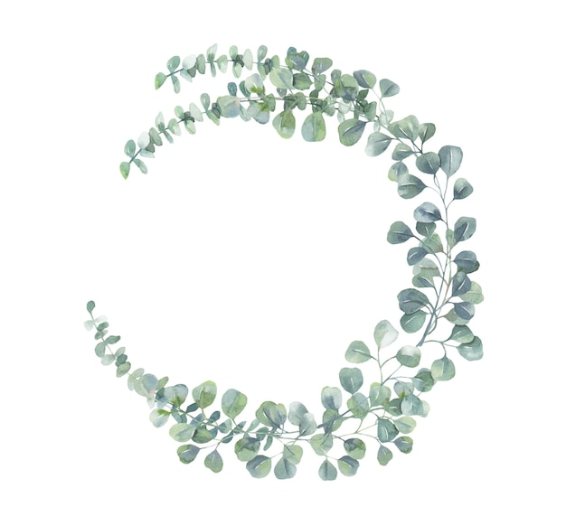Corona di eucalipto dell'acquerello.