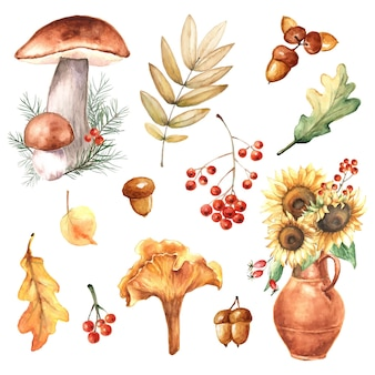 Acquerello autunno set di foglie autunnali, girasoli, funghi, ghiande, bacche