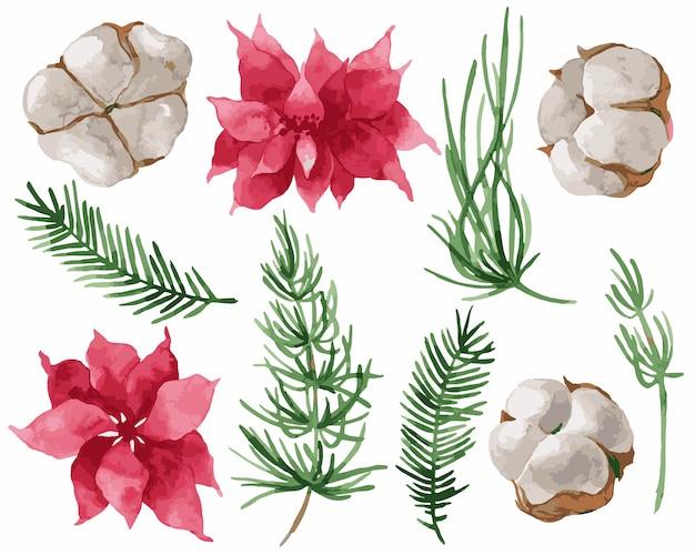 Elementi di natale dell'illustrazione delle foglie di abete dell'acquerello