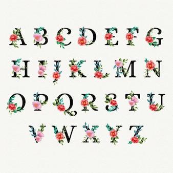 Alfabeto floreale dell'acquerello