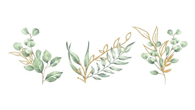 Insieme dell'illustrazione floreale dell'acquerello. collezione di rami foglia verde e oro.