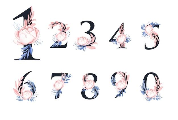 Set di numeri floreali ad acquerello di 1 2 3 4 5 6 7 8 9 0 con rosa della pace e bellissime foglie