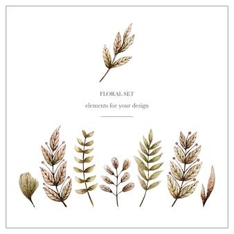 Acquerello set floreale con varie foglie e piante.
