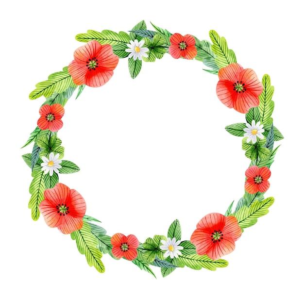 Corona floreale dell'acquerello con camomille