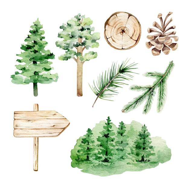 Insieme della foresta dell'acquerello