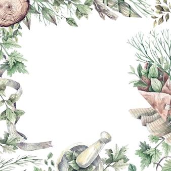 Cornice dell'acquerello con bottiglia di farmacia ed erbe organiche sane. erbe verdi e secche per aromaterapia, medicina, cosmetici biologici. prodotto per la cura della salute