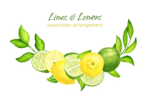 Disposizione di limoni, lime e foglie freschi dell'acquerello. illustrazione botanica di agrumi