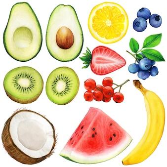 Set di illustrazioni di frutta ad acquerello