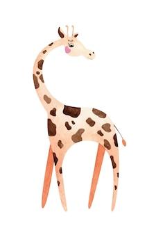 Giraffa dell'acquerello