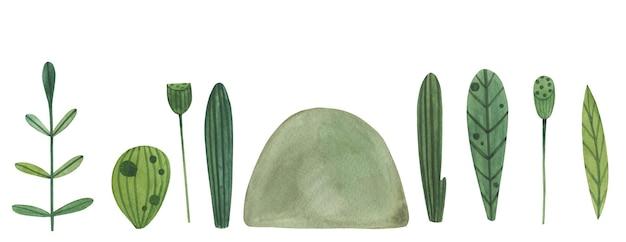 Erba verde dell'acquerello, foglie con loto.