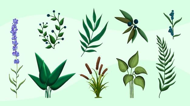 Set di foglie verdi dell'acquerello