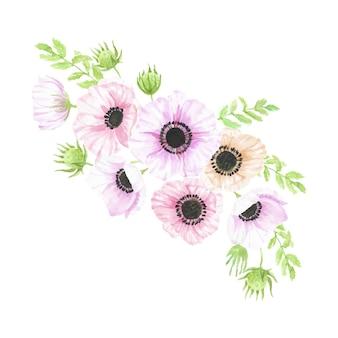 Bouquet di fiori di anemone disegnato a mano dell'acquerello