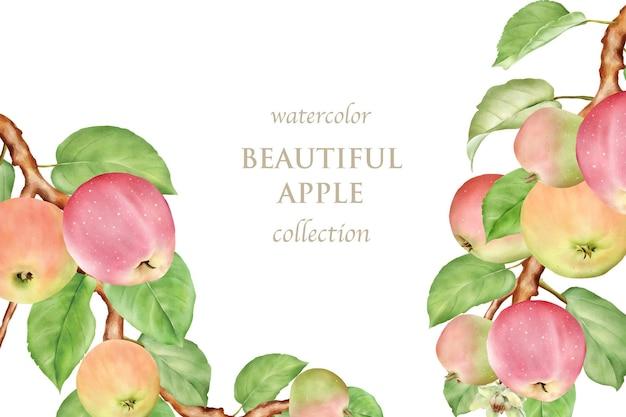 Set di carte di mele disegnate a mano ad acquerello Vettore Premium