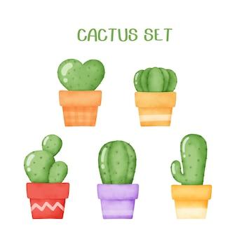 Insieme del cactus disegnato a mano dell'acquerello.