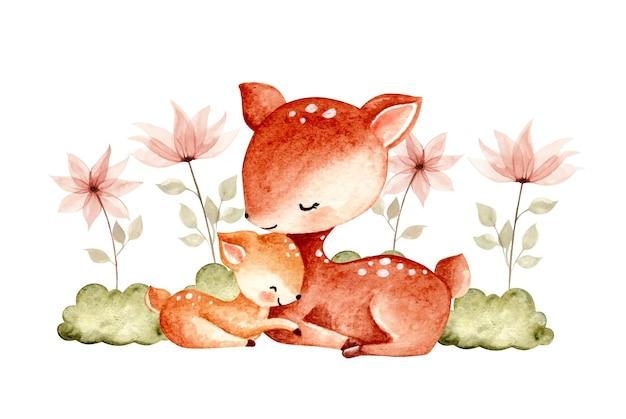 Illustrazione disegnata a mano dell'acquerello baby cervo e mamma con fiore