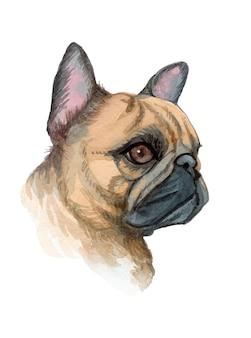 Illustrazione del cane dipinta a mano dell'acquerello