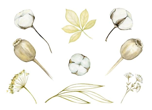 Disegno dell'illustrazione dell'acquerello impostato con i fiori