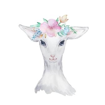 Illustrazione dell'acquerello di un agnello bianco con fiori sulla sua testa, immagine di pasqua, ritratto di una capra, elemento di design delicato