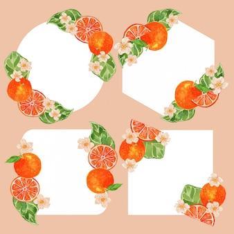 Insieme arancio dell'illustrazione del confine della struttura degli agrumi dell'acquerello
