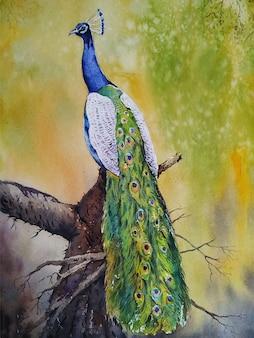 Illustrazione disegnata a mano di pittura ad acquerello