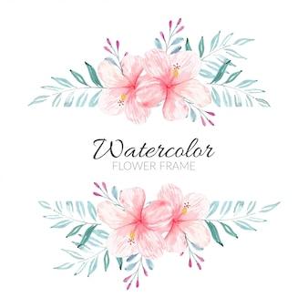 Pittura ad acquerello della cornice di fiori di ibisco rosa