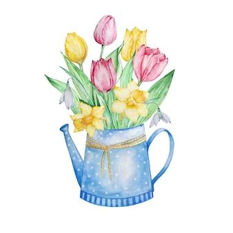 Pittura ad acquerello fiori primaverili, annaffiatoio blu con tulipani, narcisi e bucaneve.