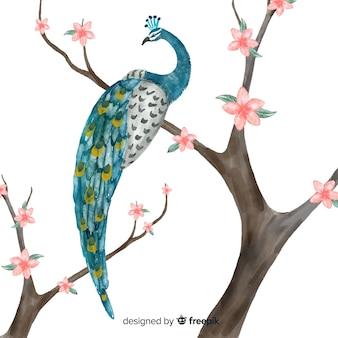 Sfondo acquerello pavone