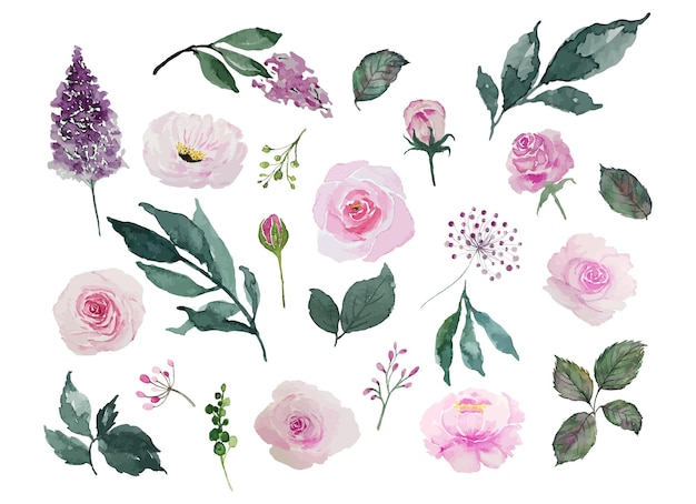 Set di fiori rosa dell'acquerello e foglie verdi